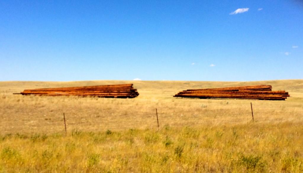 North Dakota Tree Farm
